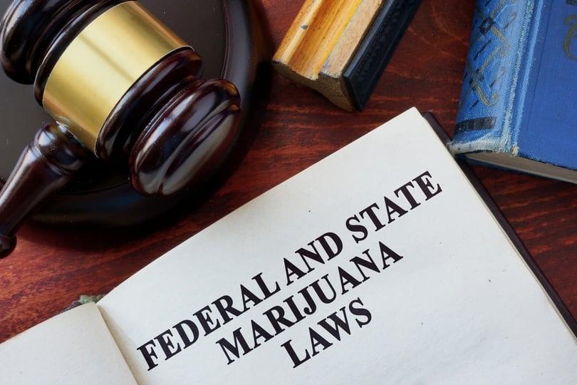 Cannabis laws in FL